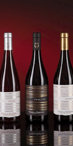 Cantine Losito Mix 6 Bottiglie Puglia Bio 2017