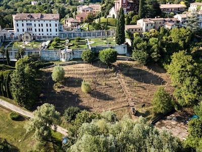 MONTELVINI , Volpago del Montello Veneto