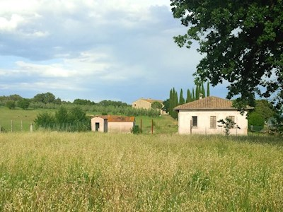 Societa Agricola Safina SRL, Follonica Toscana