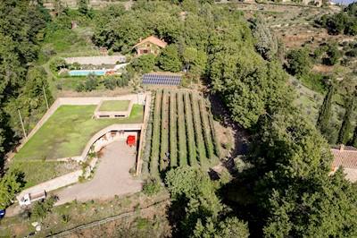 Villa i cipressi, Montalcino Toscana