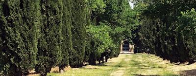 Villa Le Prata, Montalcino Toscana