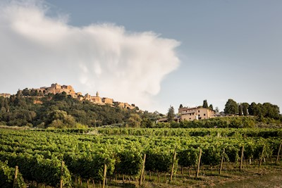 CANNETO , MONTEPULCIANO  Toscana