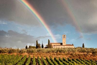 Abbazia Monte Oliveto, San Gimignano Toscana