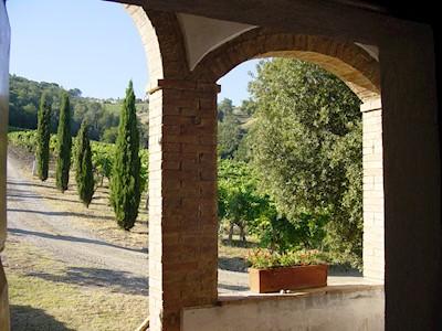 CANNETA, Montalcino Toscana