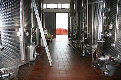 Cantine Merlone, Cossombrato Piemonte