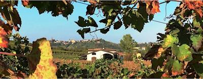 Moretti Adimari, Isola d'Asti Piemonte
