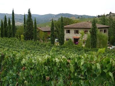 Pian del Gallo, Greve in Chianti Toscana