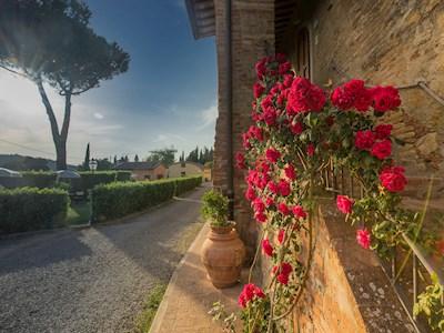 Fattoria di Pancole, San Gimignano Toscana
