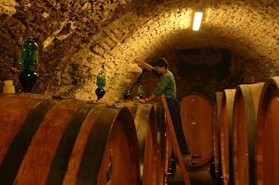 Tenute Squarcialupi - La Castellina, Castellina in Chianti Toscana
