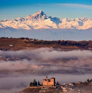 LE GINESTRE, GRINZANE CAVOUR Piemonte