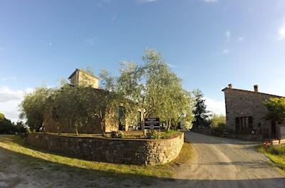 Poggio dell' Oliviera, Castelnuovo Berardenga Toscana