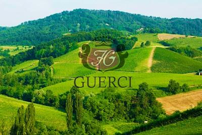 Società Agricola Flli Guerci, CASTEGGIO Lombardia