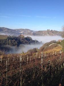 Azienda Agricola Seirole, Santo Stefano Belbo Piemonte