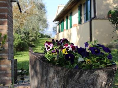 Az. Agricola La Fonte, Bevagna Umbria