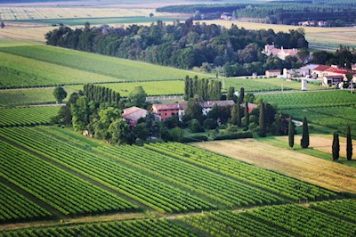 PARADIIS , Paradiso di Pocenia Friuli-Venezia Giulia