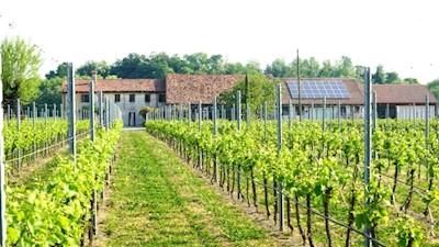 Vini Monticello, DUE CARRARE Veneto