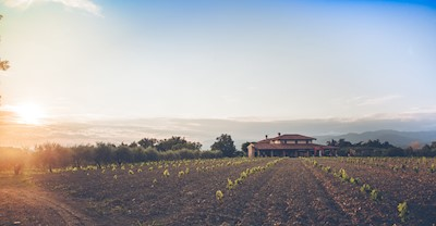 Scubla, Premariacco Friuli-Venezia Giulia