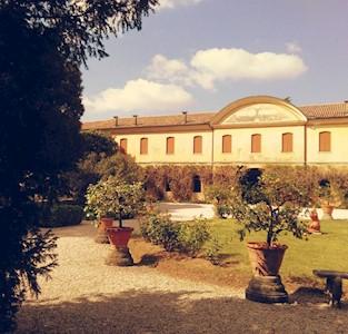 CIMA DEL POMER, MONTEBELLUNA  Veneto