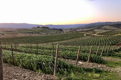 Podere Cigli, Gavorrano Toscana