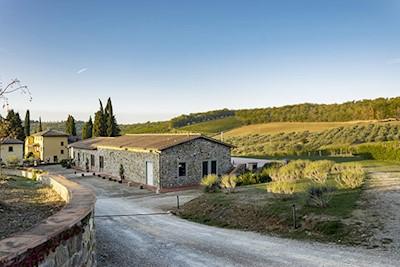 Panzanello Azienda Agricola, Greve in Chianti Toscana