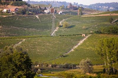 Fratelli Pavia, Agliano Terme Piemonte