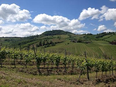 Lefiole, Montalto Pavese Lombardia