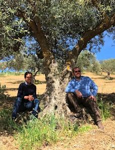 Terre di Gratia, CAMPOREALE Sicilia