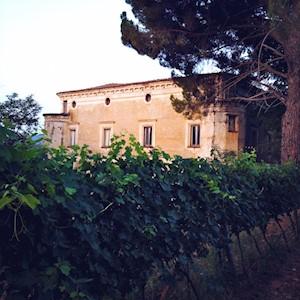 Tenute Pacelli, Malvito  Calabria