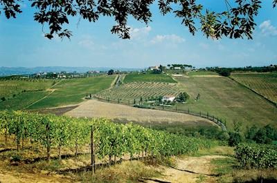 Poderi Arcangelo, SAN GIMIGNANO Toscana