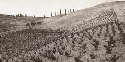 ROCCA DI MONTEGROSSI, Gaiole in Chianti Toscana