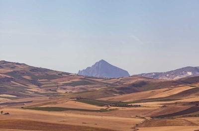 Azienda agricola Vito Gioia, trapani Sicilia