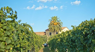 Fontefico, Vasto Abruzzo