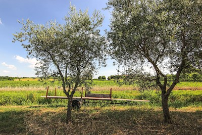 CANTINA CERESA, Pozzolengo Lombardia