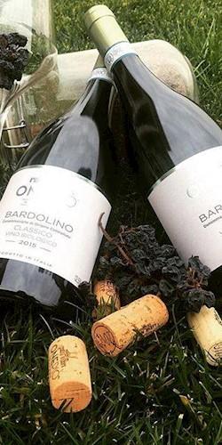 Onepio' Winery  Bardolino Biologico Classico DOC 2015 2015